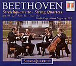 Suske_beethoven_late_2