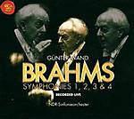 Brahms_384