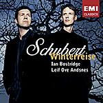 Schubert71jv1yvtgkl_sy355_